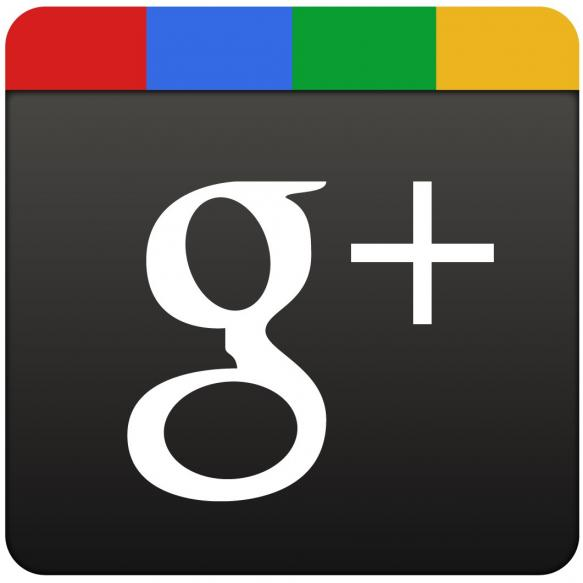 Google+ logo chimney sweep Basildon